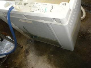 ゴキブリが出てくる洗濯機の裏側.jpg